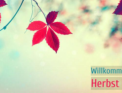 Herbstlich Willkommen! Web- & Grafikdesign im Herbst 2017